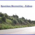 Αφηγήσεις των γεροντότερων της πόλης των Ψαχνών Ευβοίας, για το ιστορικό τοπωνύμιο «ΒΡΥΣΑΚΙΑ»